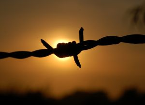 sunset-behind-a-barbed-wire-841278-m