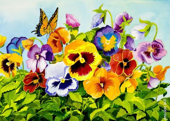 the meaning of a pansy flower in a dream  the dream well, Natural flower